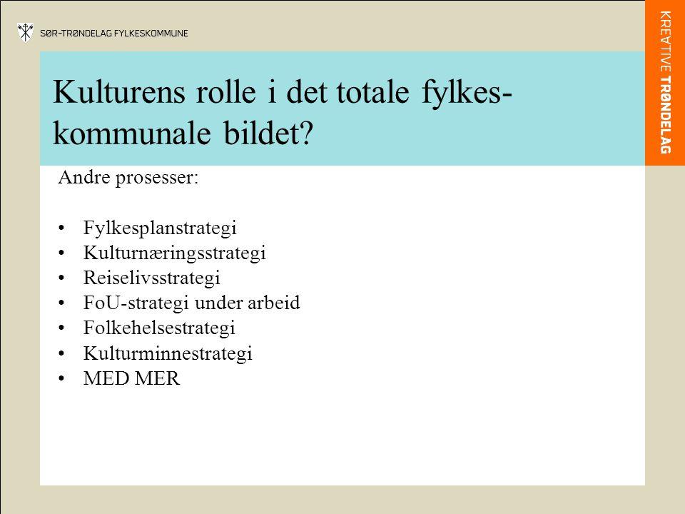 Kulturens rolle i det totale fylkes-kommunale bildet