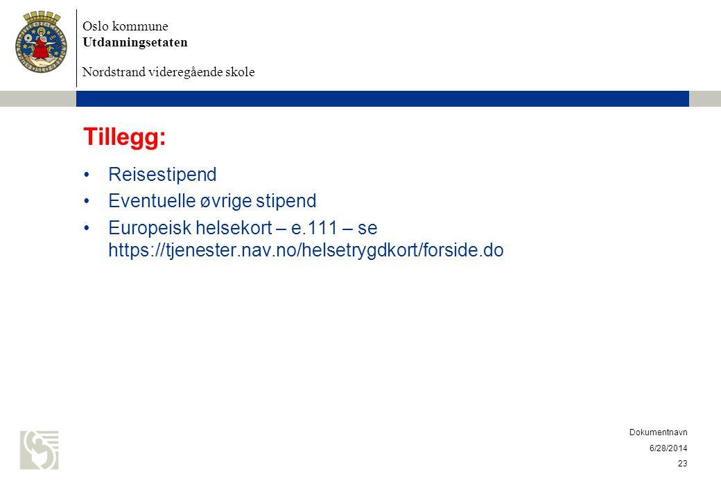 Tillegg: Reisestipend Eventuelle øvrige stipend