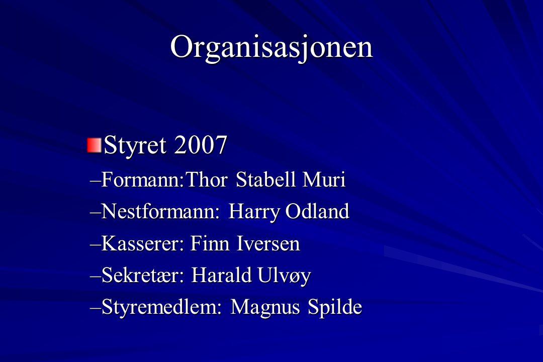 4 Hovedområder Organisasjonen Økonomi Sosialt fellesskap Musikalsk