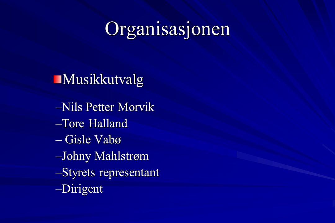 Organisasjonen Styret 2007 Formann:Thor Stabell Muri