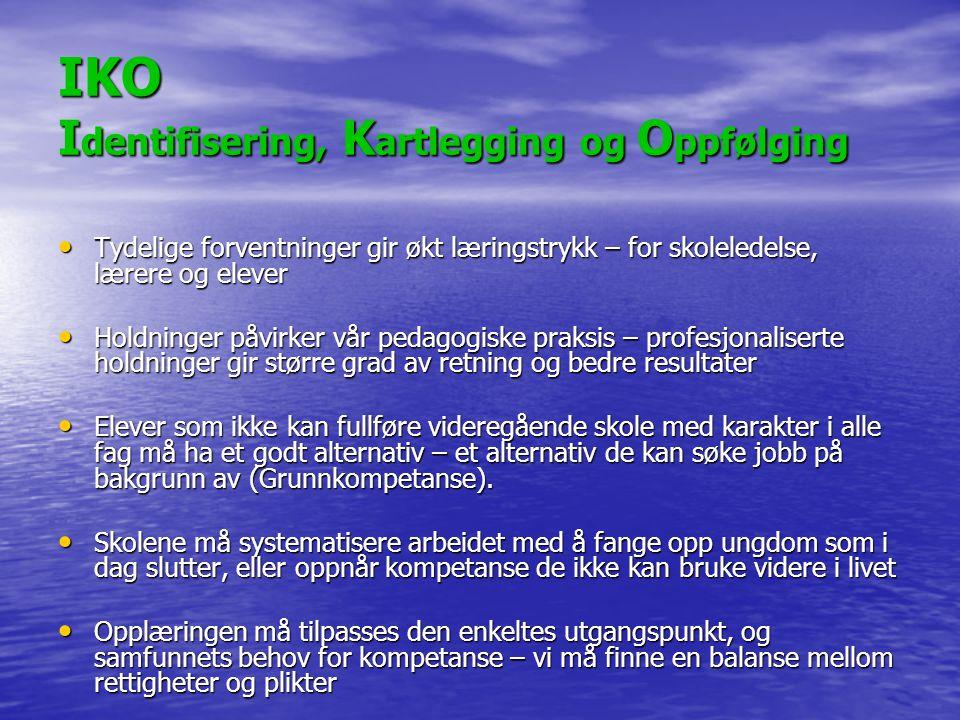 IKO Identifisering, Kartlegging og Oppfølging