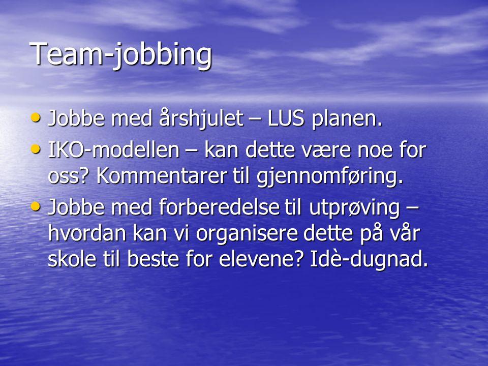 Team-jobbing Jobbe med årshjulet – LUS planen.
