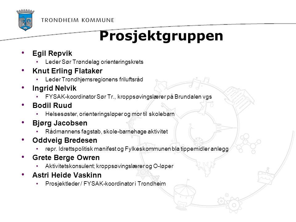 Prosjektgruppen Egil Repvik Knut Erling Flataker Ingrid Nelvik