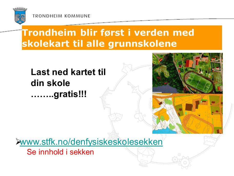 Trondheim blir først i verden med skolekart til alle grunnskolene