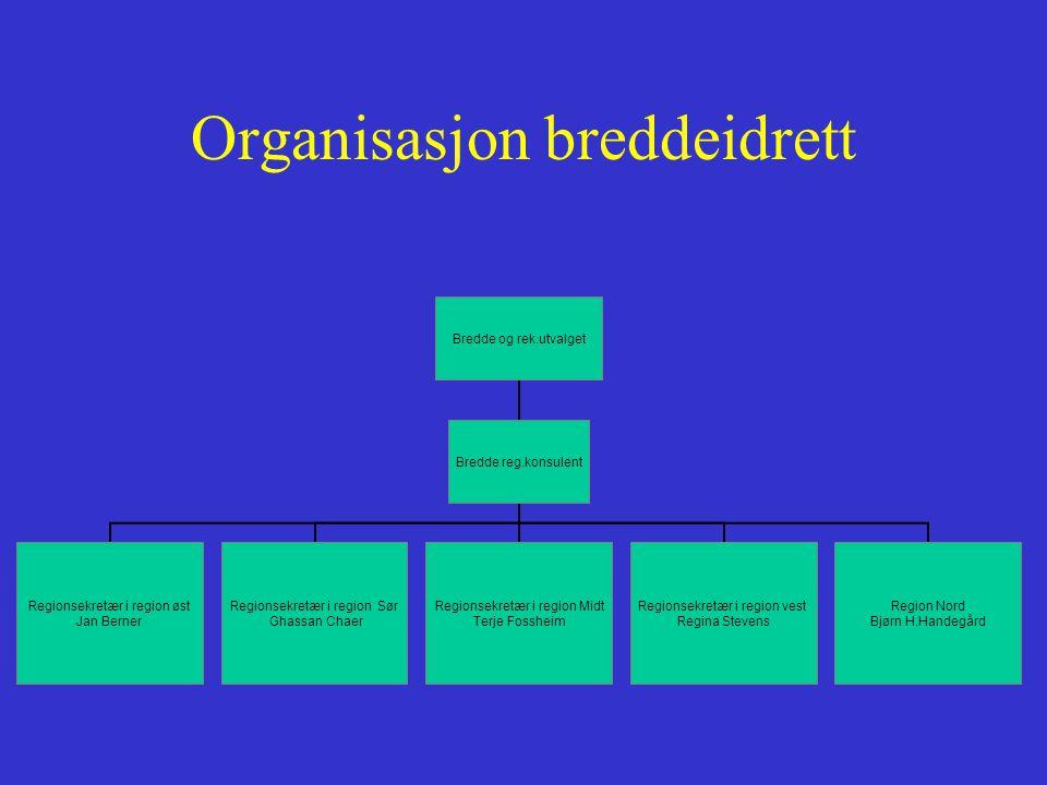 Organisasjon breddeidrett