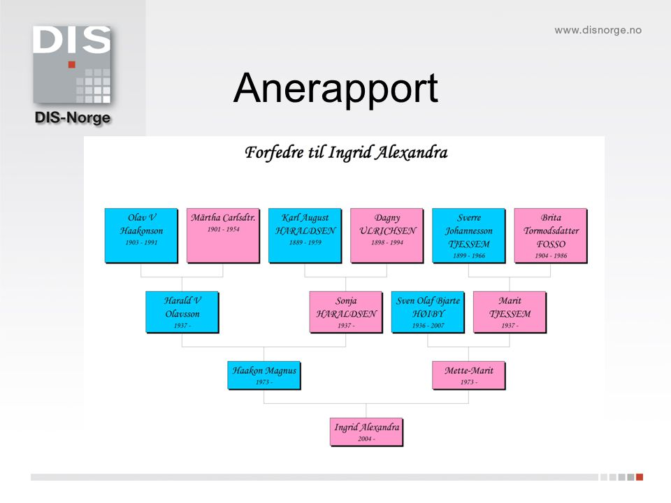 Anerapport