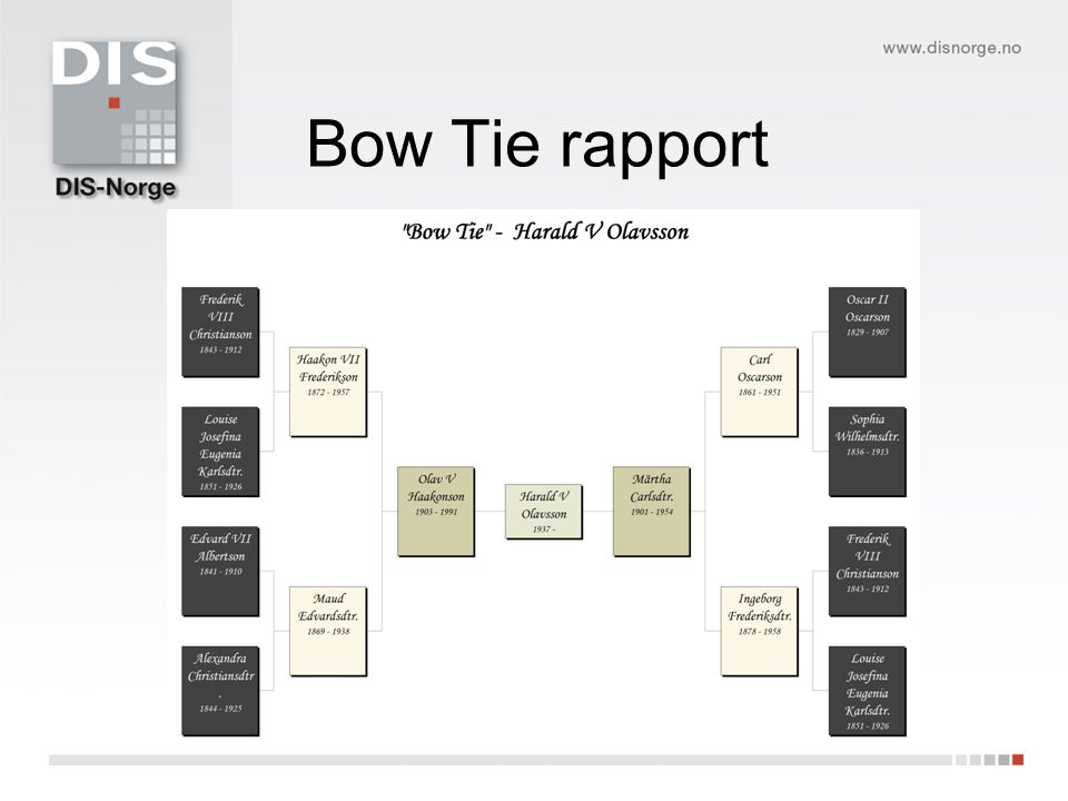 Bow Tie rapport