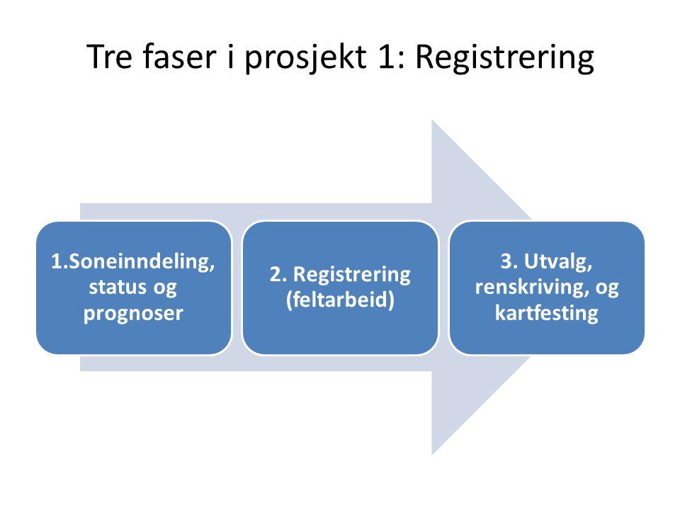Tre faser i prosjekt 1: Registrering