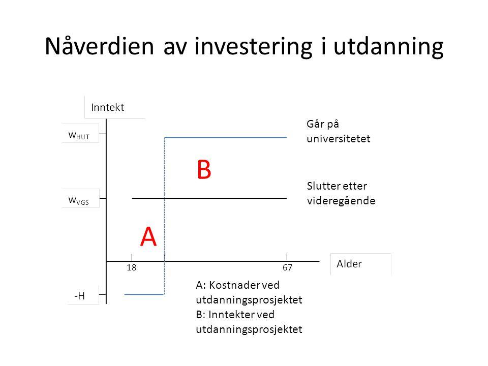 Nåverdien av investering i utdanning