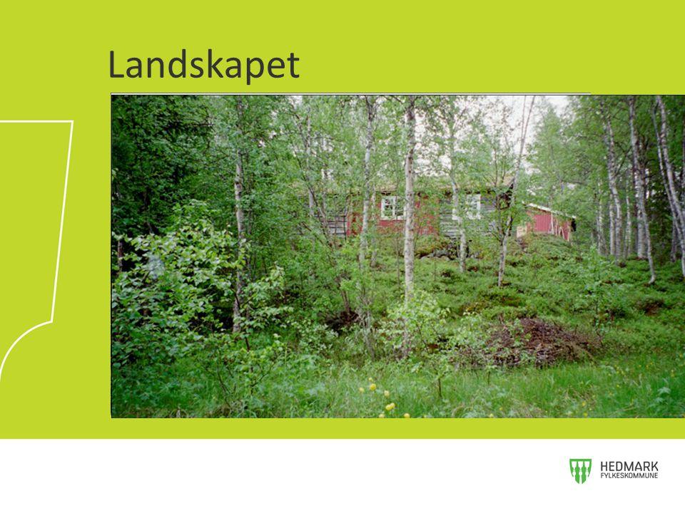 Landskapet