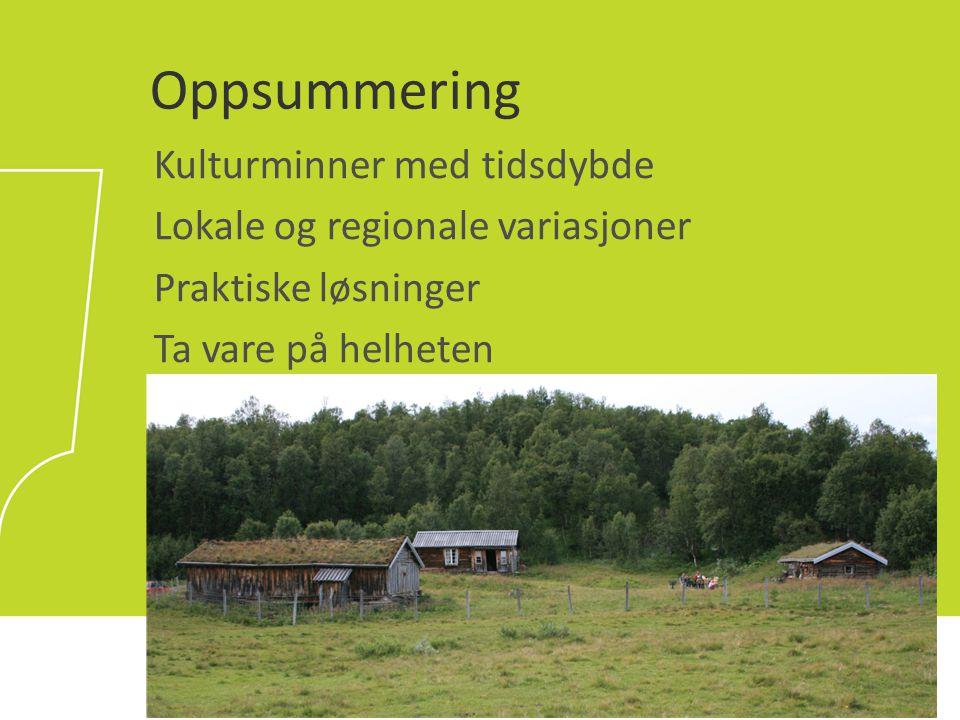 Oppsummering Kulturminner med tidsdybde Lokale og regionale variasjoner Praktiske løsninger Ta vare på helheten