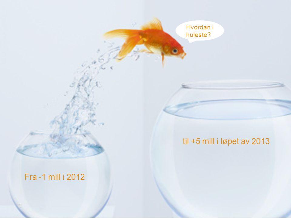 til +5 mill i løpet av 2013 Fra -1 mill i 2012 Hvordan i huleste