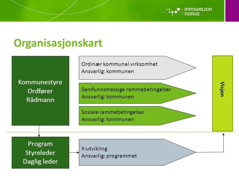 Organisasjonskart Kommunestyre Ordfører Rådmann Program Styreleder