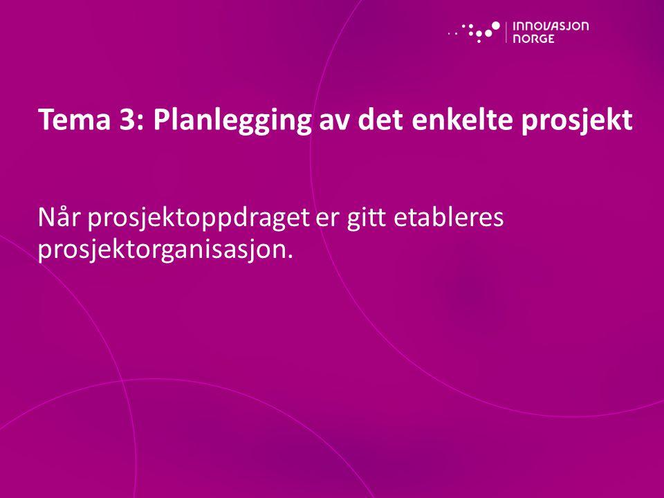 Tema 3: Planlegging av det enkelte prosjekt