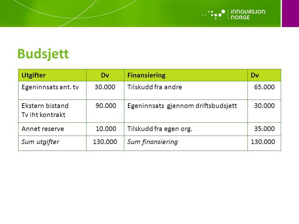 Budsjett Utgifter Dv Finansiering Egeninnsats ant. tv 30.000