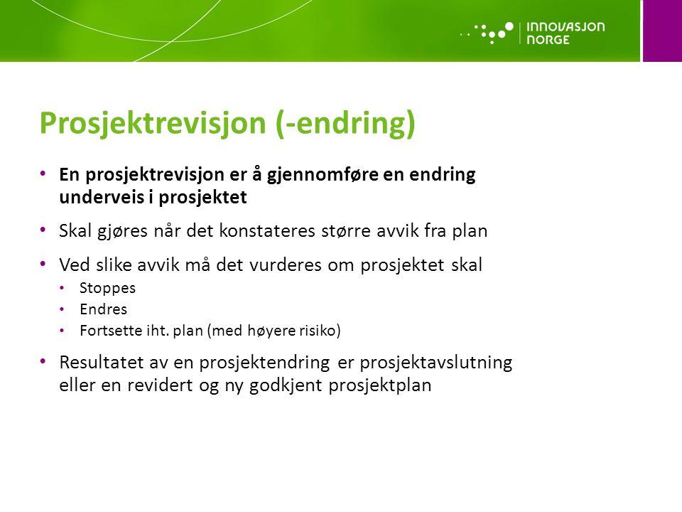 Prosjektrevisjon (-endring)