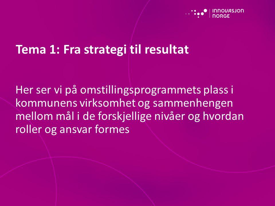 Tema 1: Fra strategi til resultat