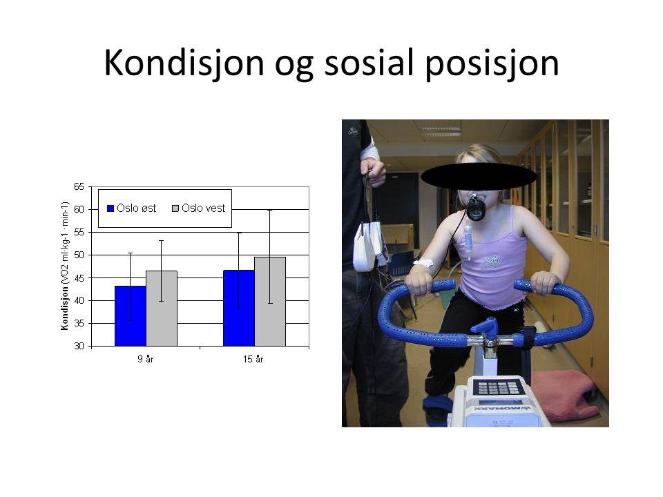 Kondisjon og sosial posisjon