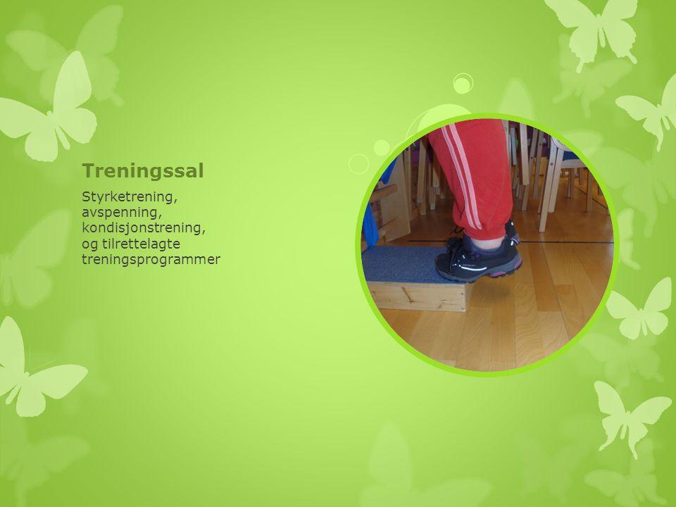 Treningssal Styrketrening, avspenning, kondisjonstrening,