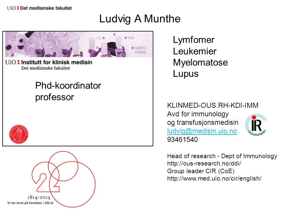 Ludvig A Munthe Lymfomer Leukemier Myelomatose Lupus Phd-koordinator