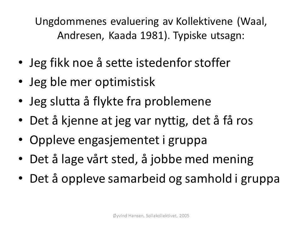 Øyvind Hansen, Sollakollektivet, 2005