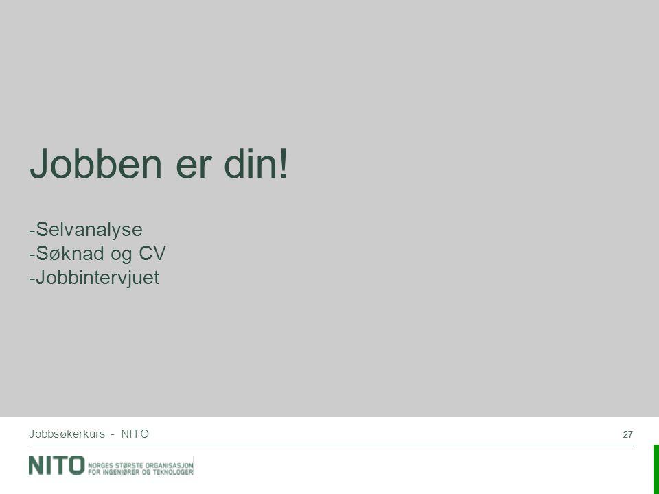 Selvanalyse Søknad og CV Jobbintervjuet