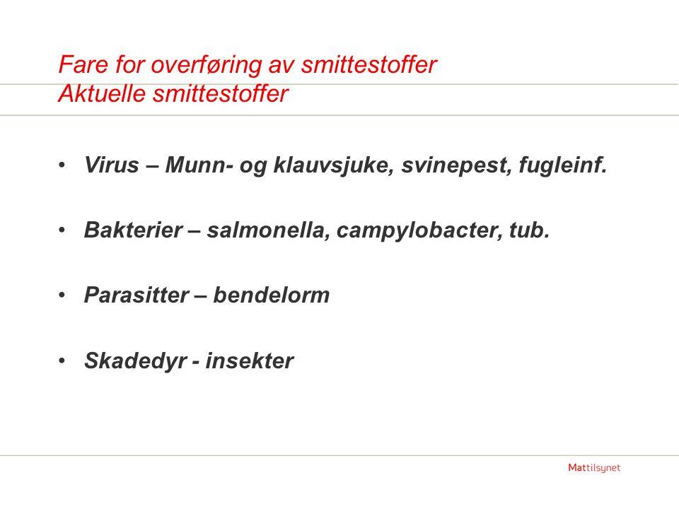 Fare for overføring av smittestoffer Aktuelle smittestoffer