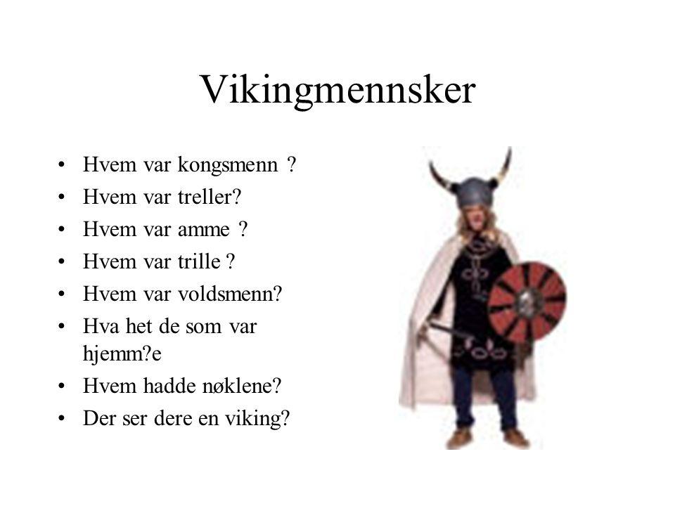 Vikingmennsker Hvem var kongsmenn Hvem var treller Hvem var amme