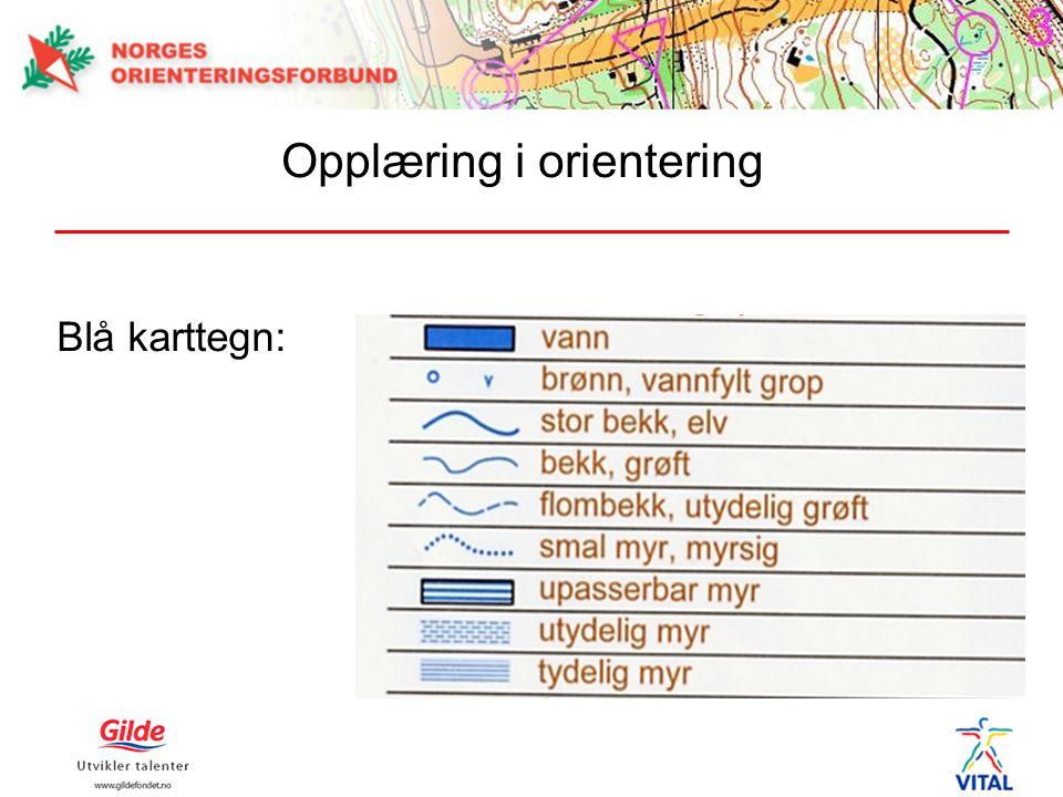 Opplæring i orientering