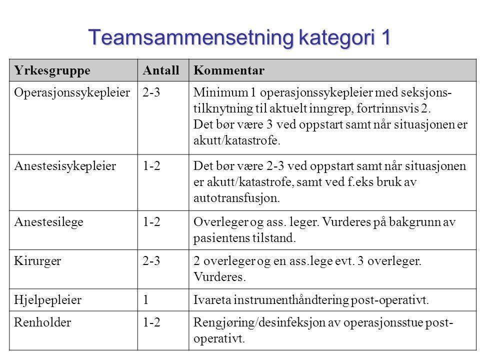 Teamsammensetning kategori 1