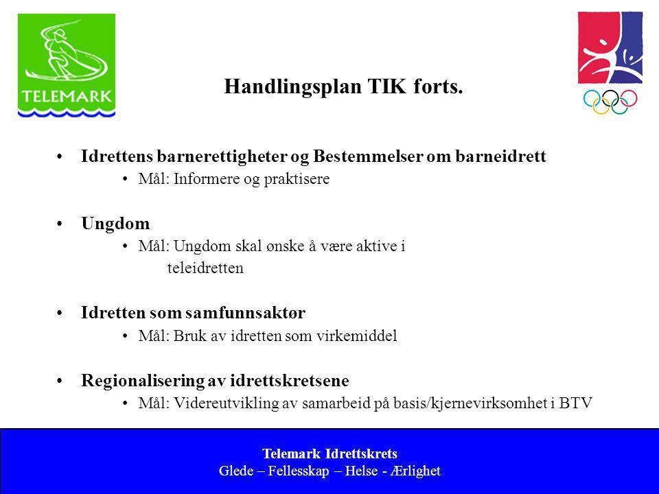 Handlingsplan TIK forts.