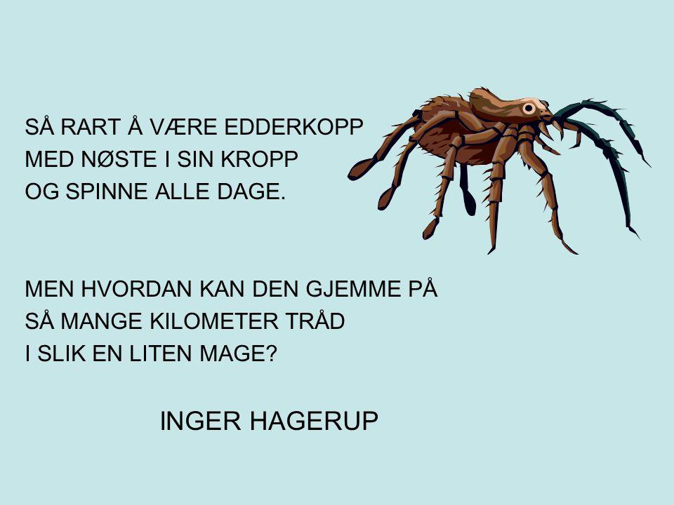 INGER HAGERUP SÅ RART Å VÆRE EDDERKOPP MED NØSTE I SIN KROPP