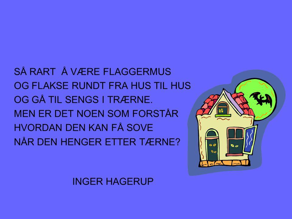 SÅ RART Å VÆRE FLAGGERMUS