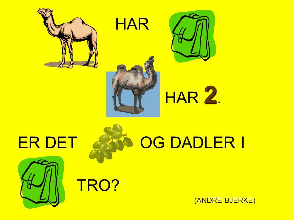 HAR HAR 2. ER DET OG DADLER I TRO (ANDRE BJERKE)