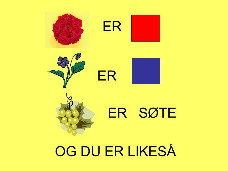 ER ER ER SØTE OG DU ER LIKESÅ Roser er røde Fioler er blå.