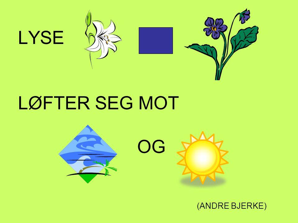 LYSE LØFTER SEG MOT OG (ANDRE BJERKE)