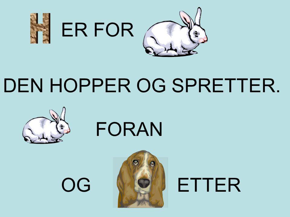 H ER FOR DEN HOPPER OG SPRETTER. FORAN OG ETTER