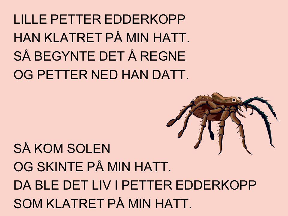 LILLE PETTER EDDERKOPP HAN KLATRET PÅ MIN HATT. SÅ BEGYNTE DET Å REGNE