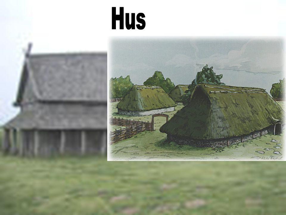 Hus Vikingene bodde i langhus.