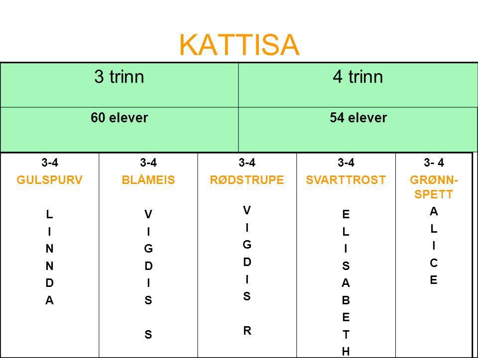 KATTISA 3 trinn 4 trinn 60 elever 54 elever 3-4 GULSPURV L I N D A
