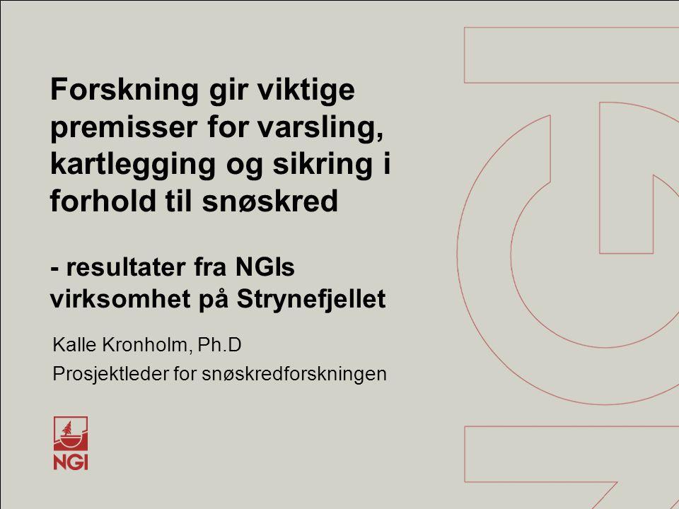 Kalle Kronholm, Ph.D Prosjektleder for snøskredforskningen