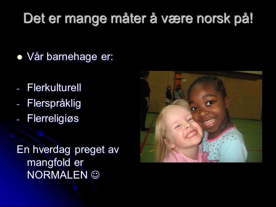 Det er mange måter å være norsk på!
