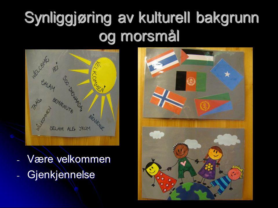 Synliggjøring av kulturell bakgrunn og morsmål