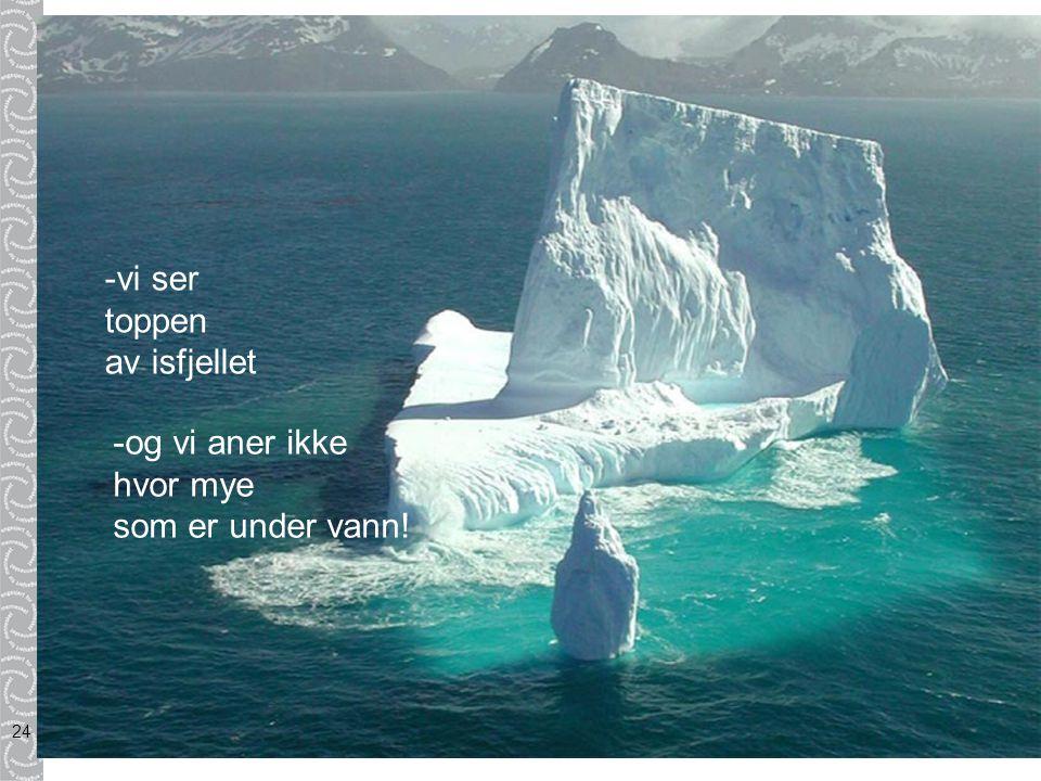 -vi ser toppen av isfjellet -og vi aner ikke hvor mye som er under vann!