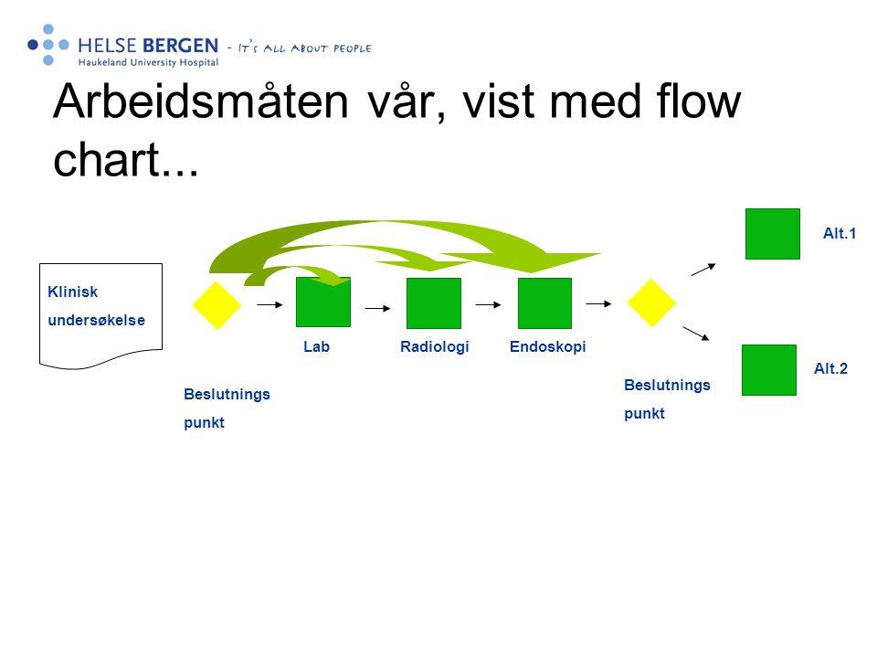 Arbeidsmåten vår, vist med flow chart...