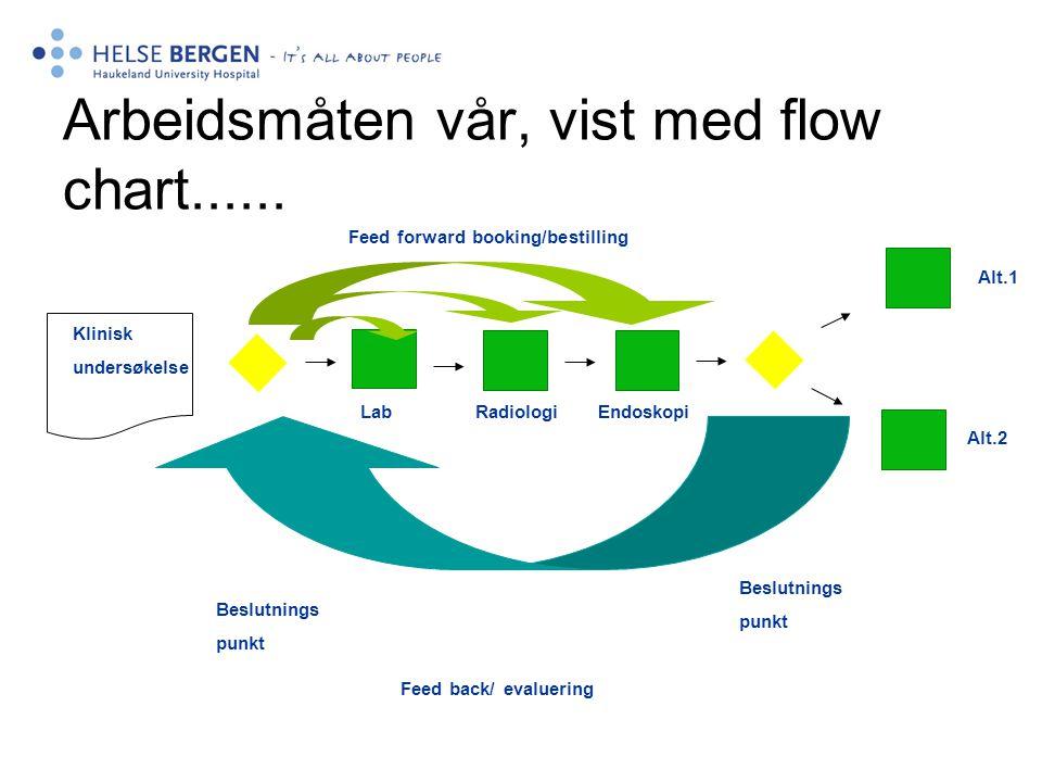 Arbeidsmåten vår, vist med flow chart......