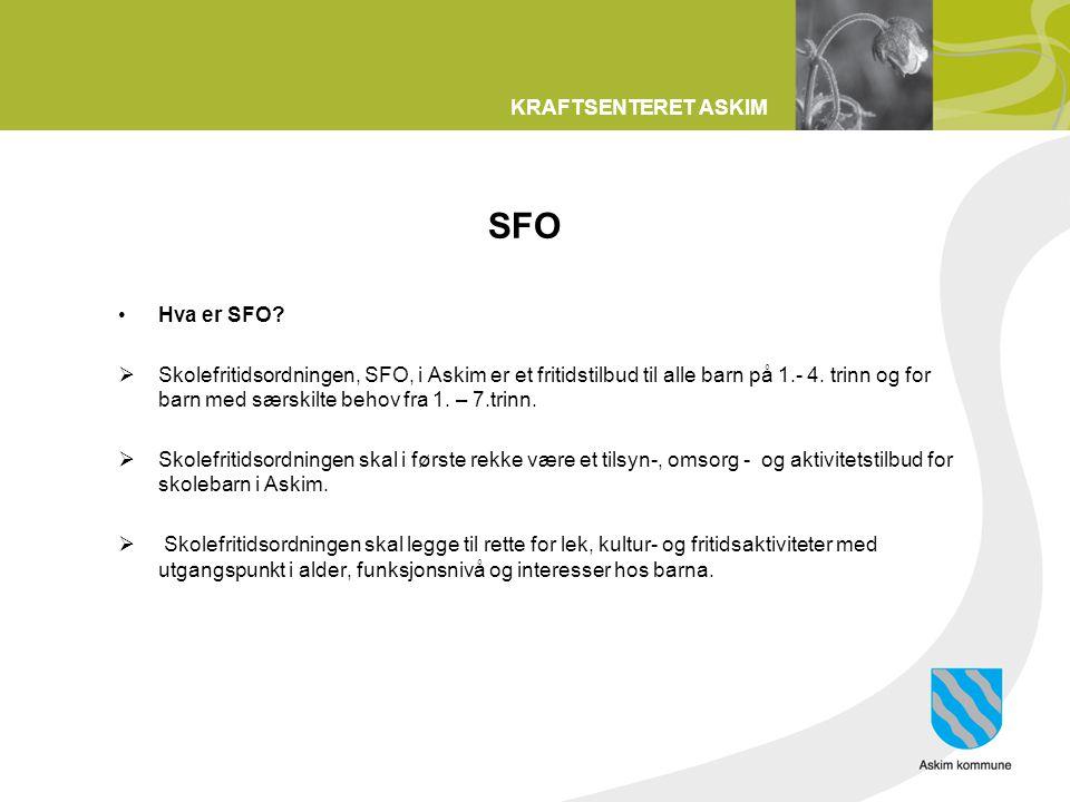 SFO Hva er SFO