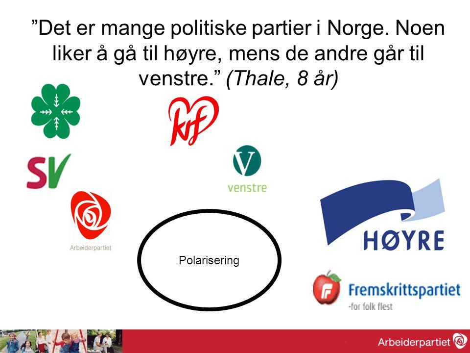 Det er mange politiske partier i Norge