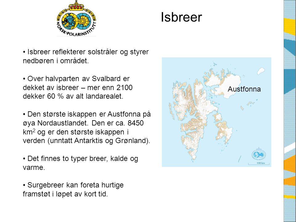 Isbreer Isbreer reflekterer solstråler og styrer nedbøren i området.