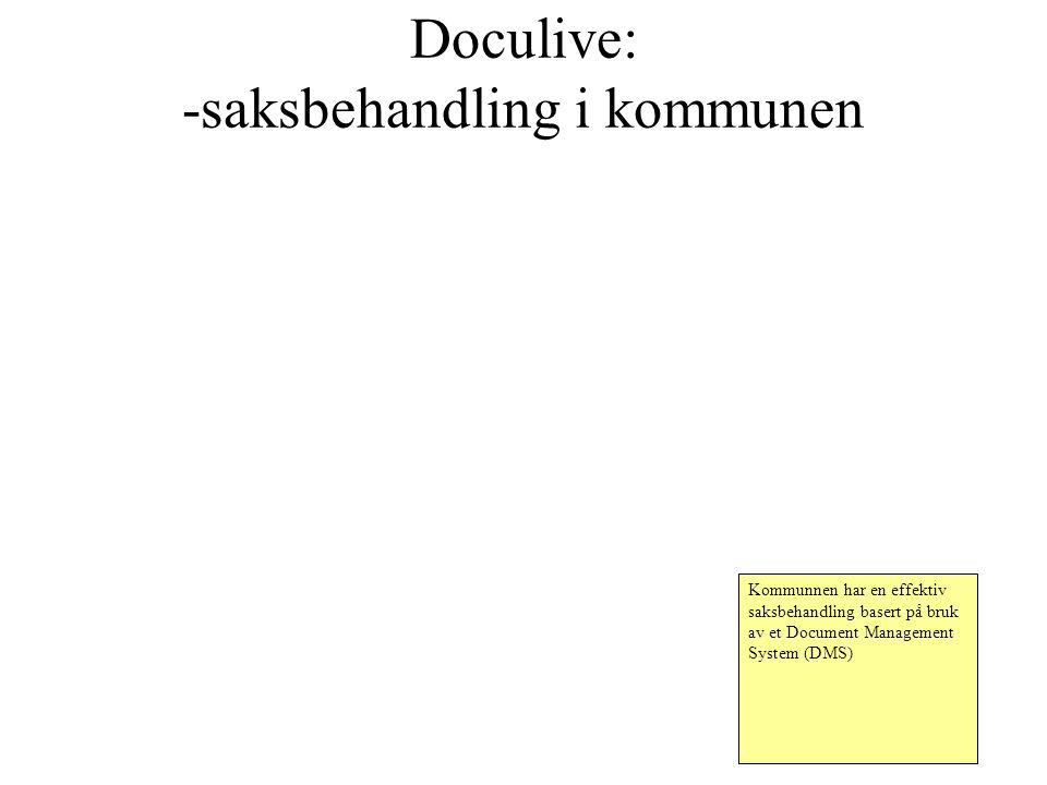 Doculive: -saksbehandling i kommunen